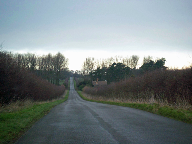 The Road to Brocklesby - January
