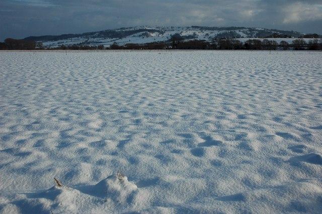 Snow covered meadow near Eckington Bridge