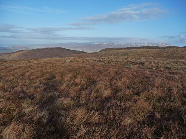 Moorland above the Glenmore road