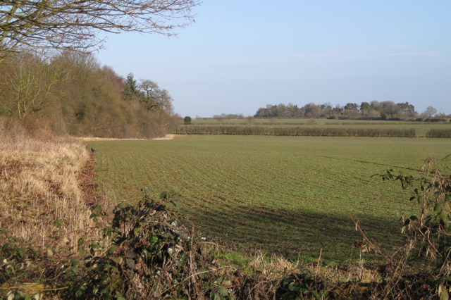 Woodland and cropland by the A46