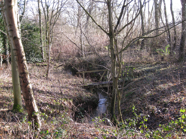 Stream in a small wood near Crewe Farm