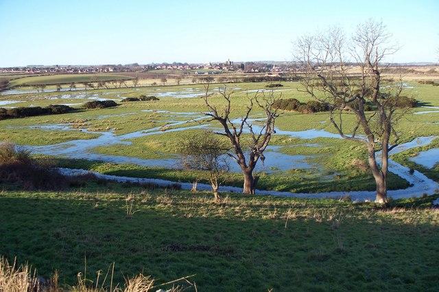 Guilder's Burn flood plain