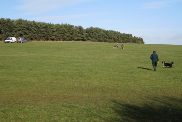 Dog training near the NAC