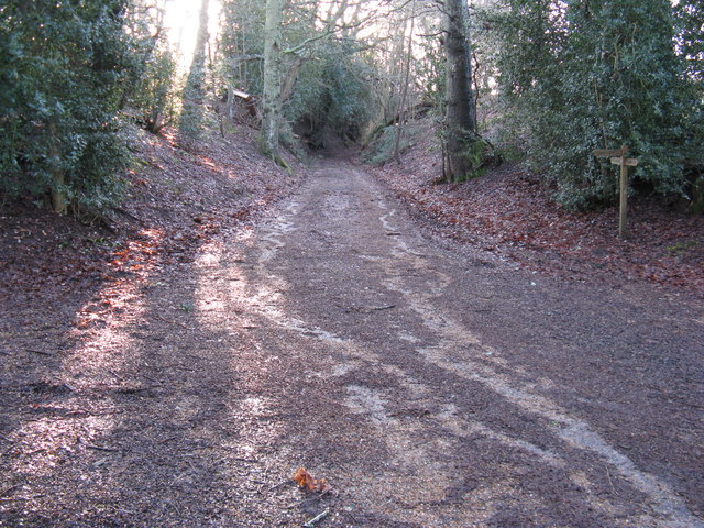 Path junction near Redford House