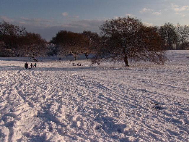 Snow on Langdon Hills