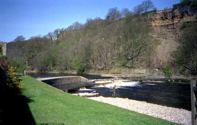 River Medway:  East Farleigh Weir