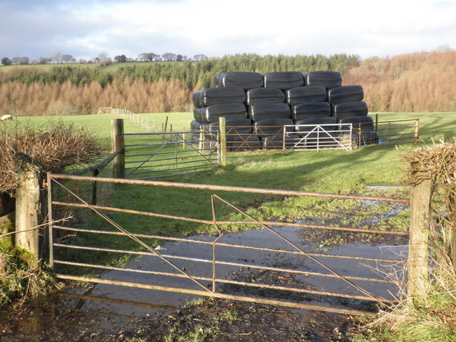 Plastic bales, near Wick Farm