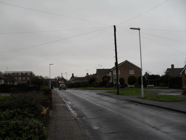 Lamppost in Holmes Lane
