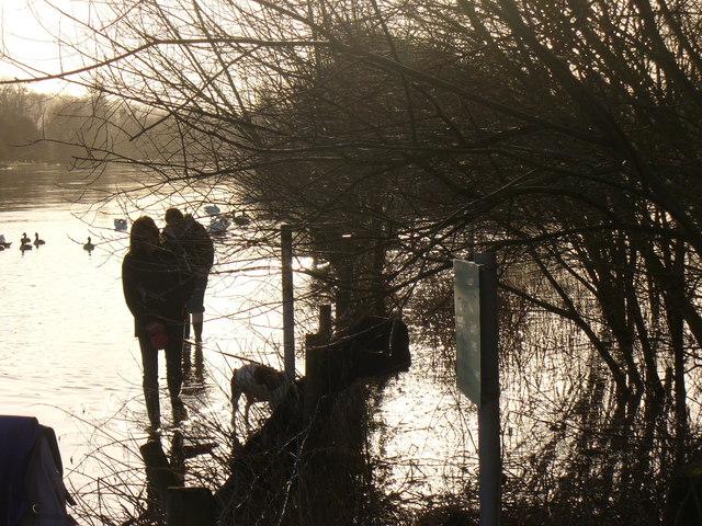 Bankfull Thames at Marlow