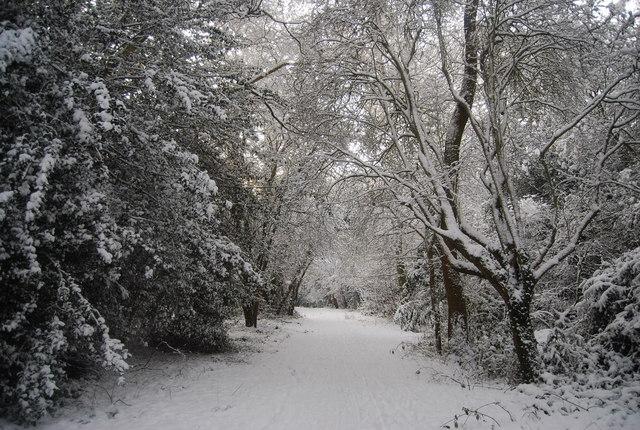 Footpath south of Bracken Cottage