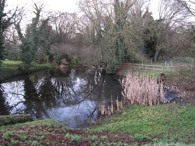 Pond by St Peter's Church, Snailwell