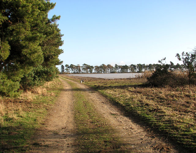 Track to Warren Farm