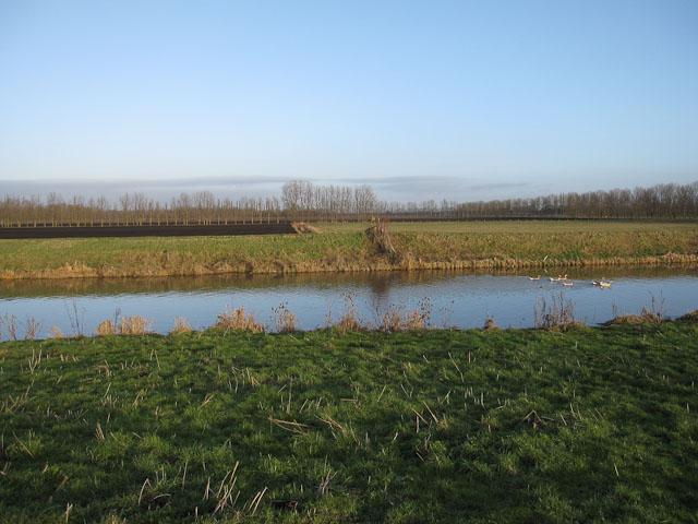 Farmland by the River Lark