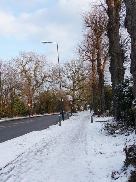 Bramley Road, London N14