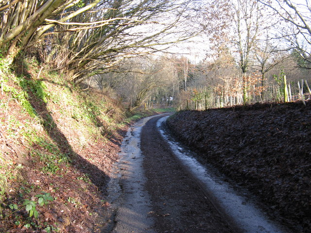 Hurston Lane approaching Hurston Place