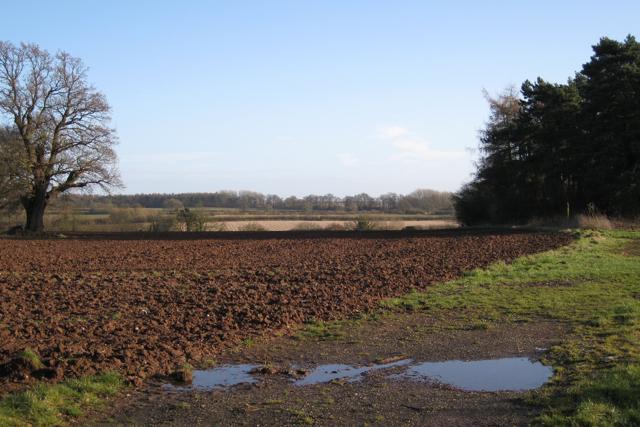 Track into field near Manor Fields Farm
