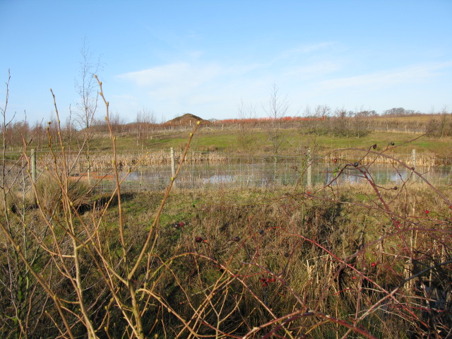 Small pond near the electricity converter station
