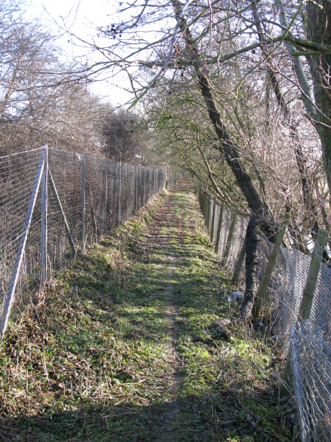Footpath between the railway embankment and a stream