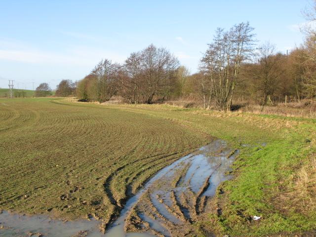 Muddy field boundary off Church Lane