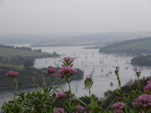 Salcombe Estuary