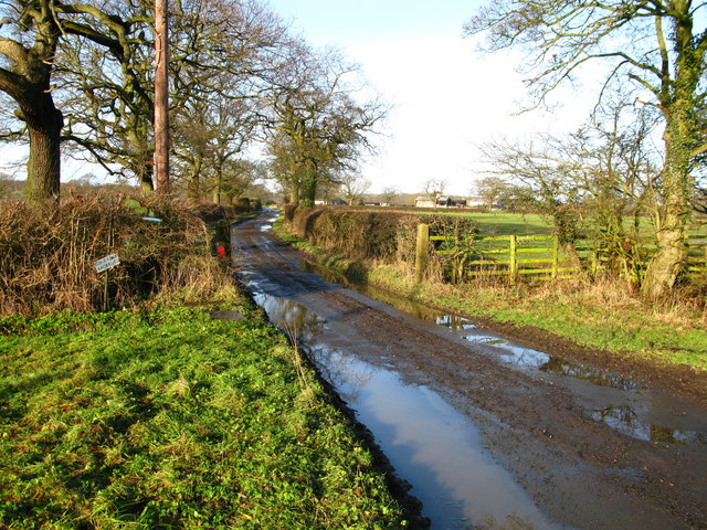 Farm Track, Langwith