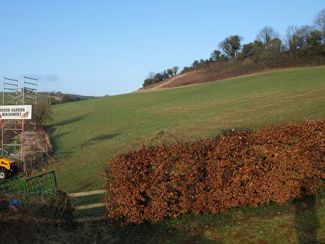 Hillside above Kerswell Gardens