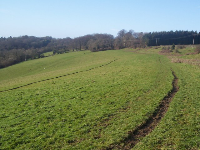 The North Downs Way near Deepdale Wood