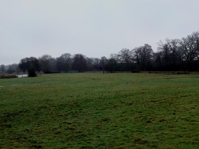 Flood Plain Meadows off The Itchen Way