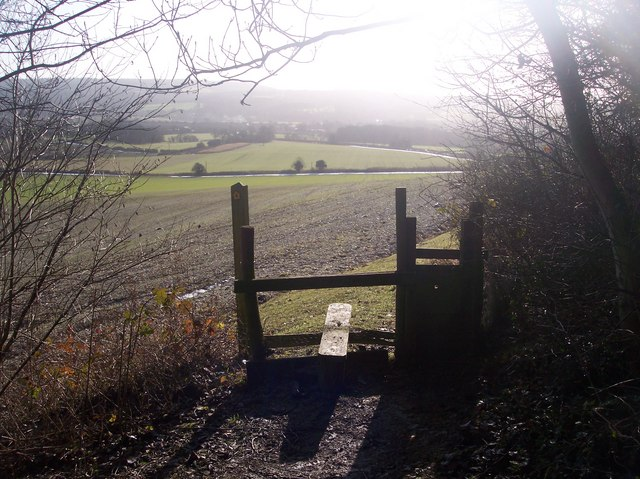 Stile and dog gate on the North Downs Way near Deepdale Wood