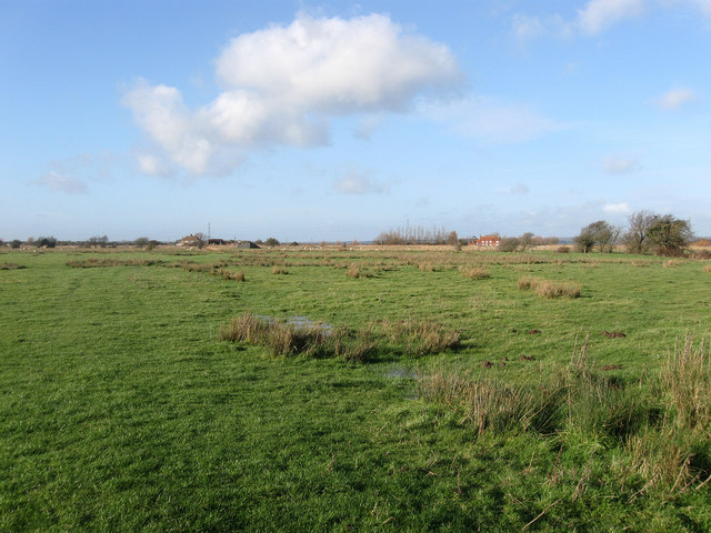 Further Wartling Trade Marsh