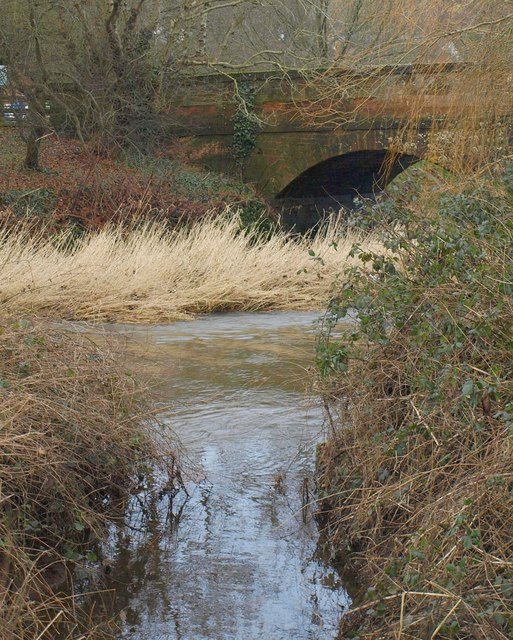 River Otter at Otterton Bridge