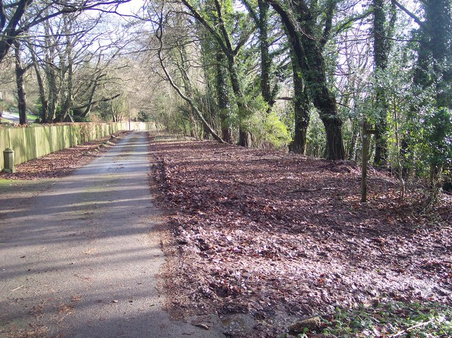 Footpath junction on The Avenue in Hill Park