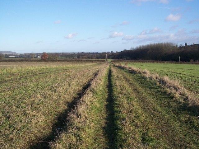 Footpath towards Beggar's Lane