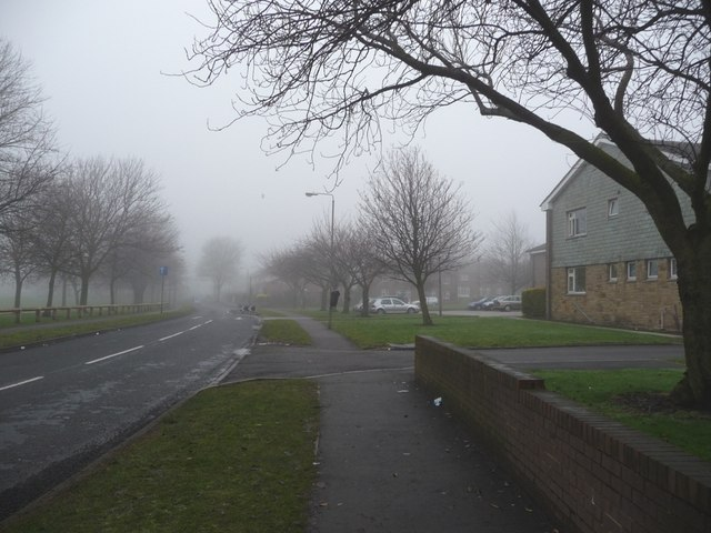 Queen Elizabeth Road, Eastmoor, with Queen Elizabeth House on the right