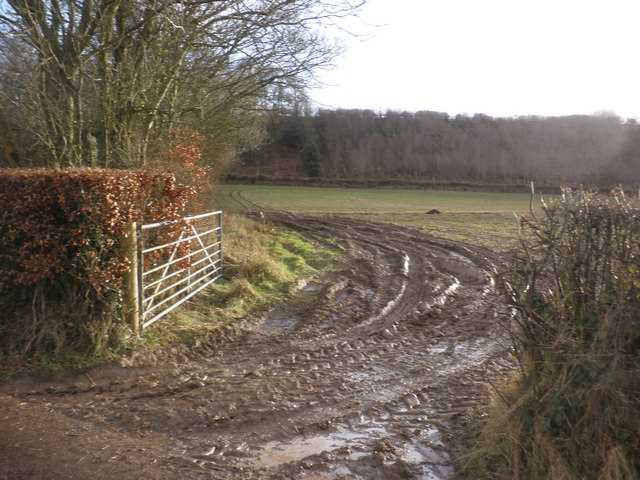 Muddy field, east of Bampton