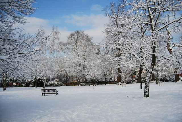 The Grove in the snow (3)