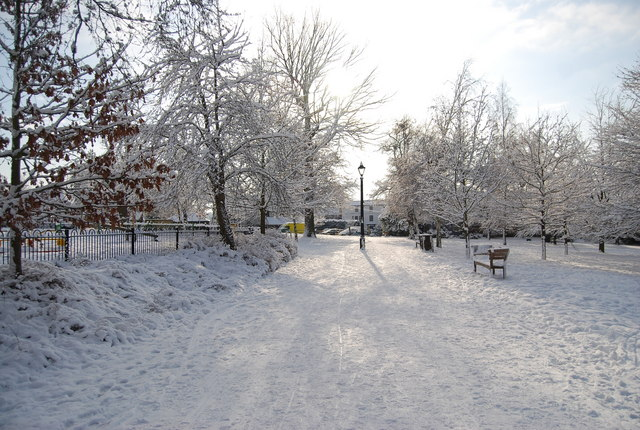 The Grove in the snow (4)