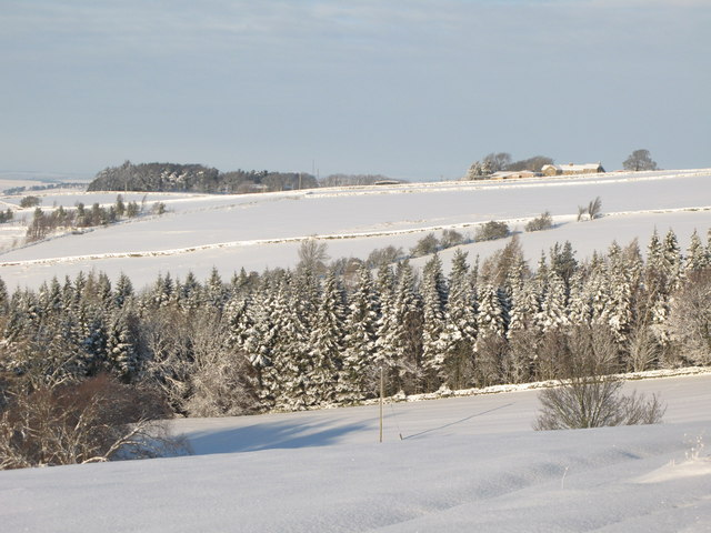 Snowy pastures northwest of Park Gates Farm