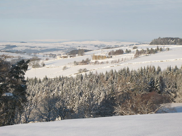 Snowy pastures west of Park Gates Farm