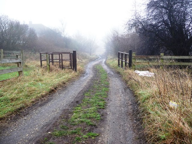 Track to the Washlands, from Park Lodge Lane