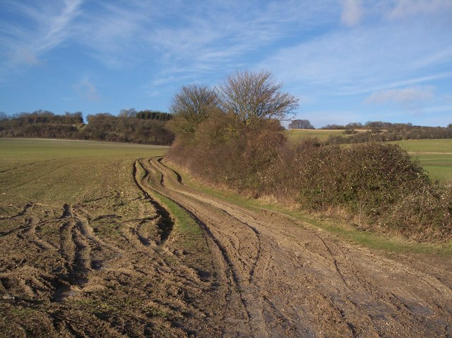 Farm track towards the North Downs