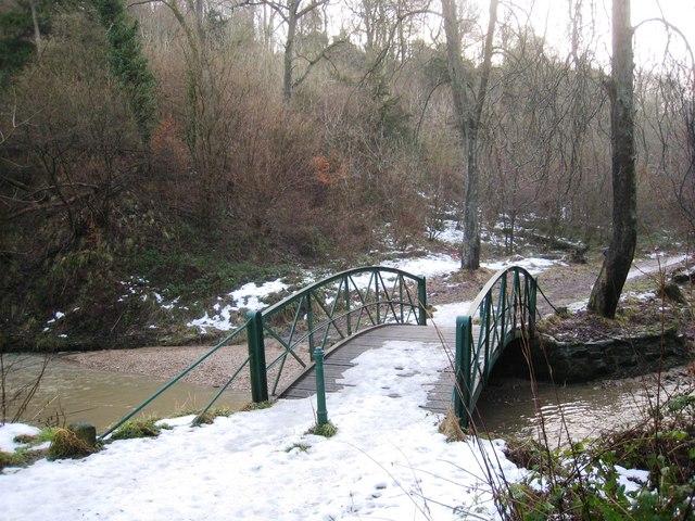 Bridge in Castle Eden Dene