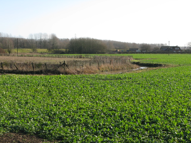 The East Stour River winding through farmland