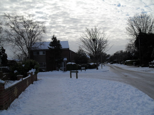 Approaching the junction of a snowy Pook Lane and Tavistock Gardens