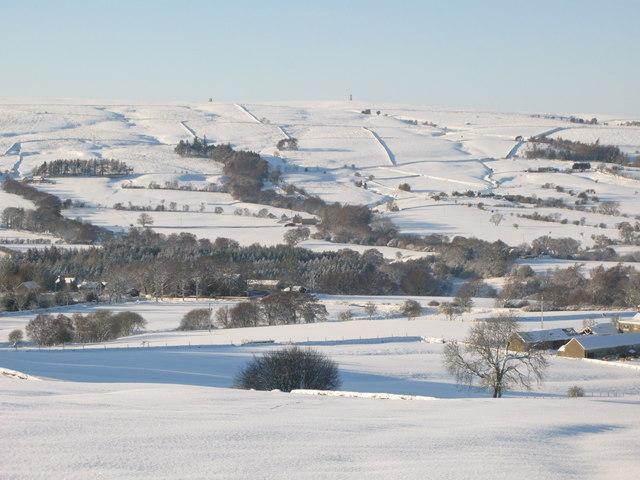 Snowy East Allen Dale near Studdon Park