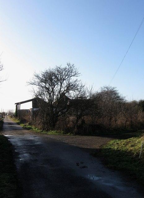 Driveway to Pylons Farm