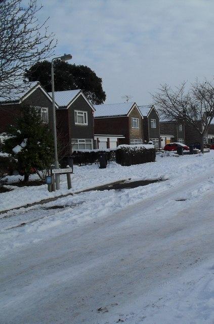 Snow covered homes in Tavistock Gardens