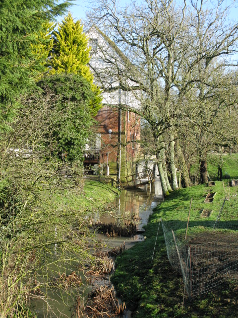 Evegate Mill and mill stream through the trees