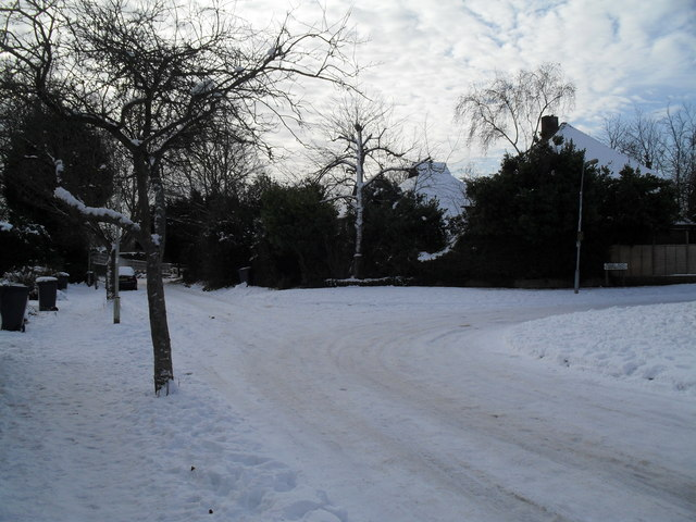 A snowy turn from Pook Lane into Pembury Road