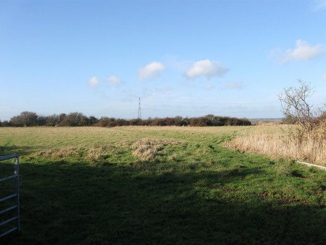 Ricksteddle Field